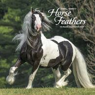 Willow Creek Press Horse Feathers 2020 Wall Calendar