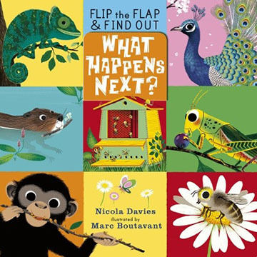 What Happens Next By Nicola Davies
