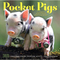 Pocket Pigs 2018 Wall Calendar by Richard Austin