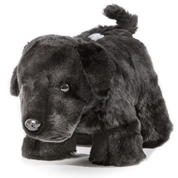 Carstens Inc. Black Lab Coin Bank