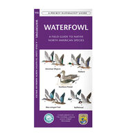 Waterfowl: A Field Guide to Native North American Species By James Kavanagh