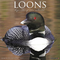 Willow Creek Press Loons 2019 Wall Calendar