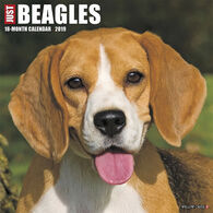Willow Creek Press Just Beagles 2019 Wall Calendar