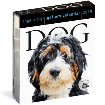 Dog 2019 Page-A-Day Gallery Calendar by Workman Publishing