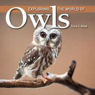 Exploring the World of Owls by Tracy Read