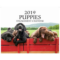 Puppies 2019 Wall Calendar by Mahoney Publishing