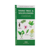 Maine Trees & Wildflowers by James Kavanagh