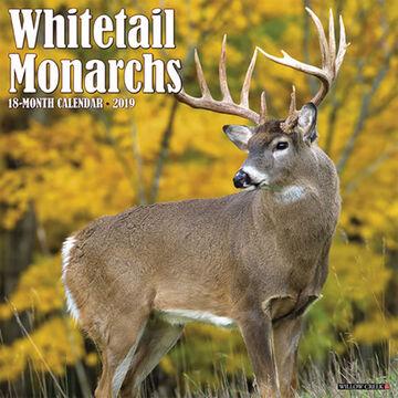 Willow Creek Press Whitetail Monarchs 2019 Wall Calendar