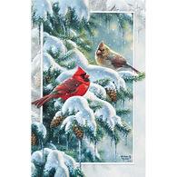 Pumpernickel Press Cardinal Greetings Deluxe Boxed Greeting Cards