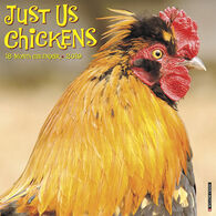 Willow Creek Press Just Us Chickens 2019 Wall Calendar