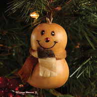 Meadowbrooke Gourds Flake Ornament Gourd