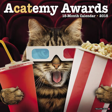 Willow Creek Press Acatemy Awards 2018 Wall Calendar