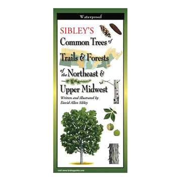 Sibley's Common Trees of Trails & Forests of the Northeast & Upper Midwest: FoldingGuides