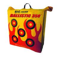 BIGshot Ballistic 350 Archery Bag Target