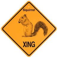 KC Creations Squirrel XING Sign