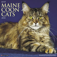 Willow Creek Press Just Maine Coon Cats 2018 Wall Calendar