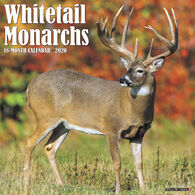 Willow Creek Press Whitetail Monarchs 2020 Wall Calendar