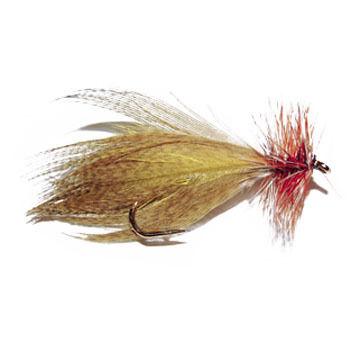 Paul's Rainbow Slayer Hornberg Fly