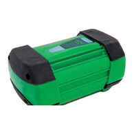 ION 40V MAX Lithium Ion Battery