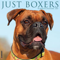 Willow Creek Press Just Boxers 2021 Wall Calendar