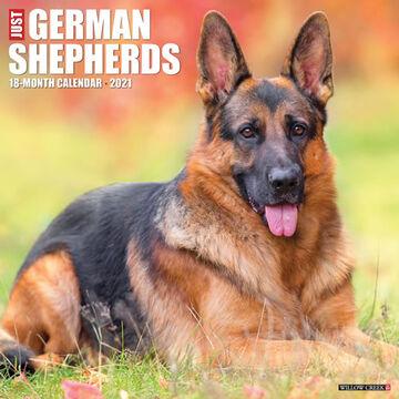 Willow Creek Press Just German Shepherds 2021 Wall Calendar