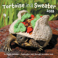 Tortoise in a Sweater 2018 Wall Calendar by Katie Bradley