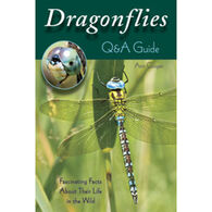 Dragonflies: Q&A Guide: Fascinating Facts About Their Life in the Wild By Ann Cooper