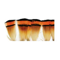 Wapsi Golden Pheasant Tippet Fly Tying Material