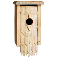 Welliver Carved Owl Bluebird Birdhouse