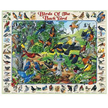 White Mountain Jigsaw Puzzle - Birds Of The Backyard