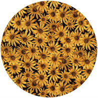 Andréas Decorative Black Eyed Susan Jar Opener
