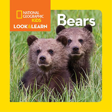National Geographic Little Kids Look and Learn: Bears by National Geographic Kids