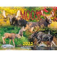 Maine Scene Moose 2022 Wall Calendar