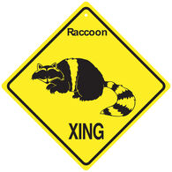 KC Creations Raccoon XING Sign