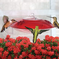 Droll Yankees Window Hummer 3 Hummingbird Bird Feeder