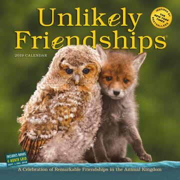 Unlikely Friendships 2019 Wall Calendar by Workman Publishing
