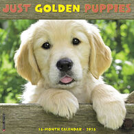 Willow Creek Press Just Golden Puppies 2018 Wall Calendar
