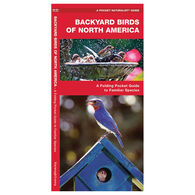 Backyard Birds of North America: A Folding Pocket Guide to Familiar Species by James Kavanagh