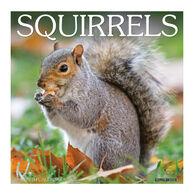 Willow Creek Press Squirrels 2022 Wall Calendar