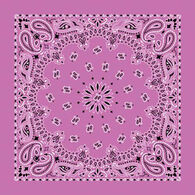 Springs Creative/Carolina Women's Traditional Paisley Bandana