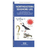 Northeastern Seashore Life: A Folding Pocket Guide to Familiar Coastal Species North of Massachusetts By James Kavanagh