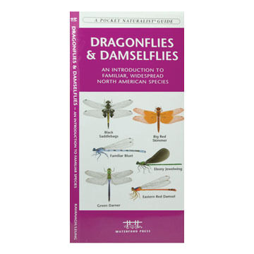 Dragonflies & Damselflies by James Kavanagh
