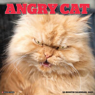 Willow Creek Press Angry Cat 2021 Wall Calendar