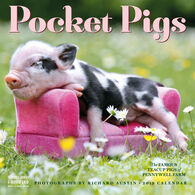 Pocket Pigs 2019 Wall Calendar by Richard Austin