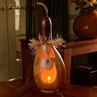 Meadowbrooke Gourds Sawyer Medium Tall Lit Gourd