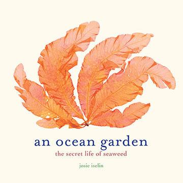 An Ocean Garden: The Secret Life of Seaweed By Josie Iselin