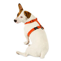 Planet Dog Cozy Hemp Dog Harness