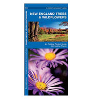 New England Trees Wildflowers: A Folding Pocket Guide to Familiar Species By James Kavanagh