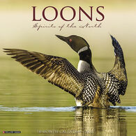 Willow Creek Press Loons 2018 Wall Calendar