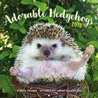 Adorable Hedgehogs 2018 Wall Calendar by Huffy Hedgehogs